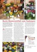 nippes[er]leben - Belgisches[er]leben - Seite 4