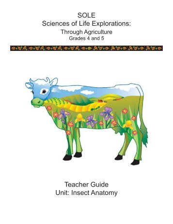 Label the Grasshopper Anatomy Diagram - Wyoming Agriculture in ...