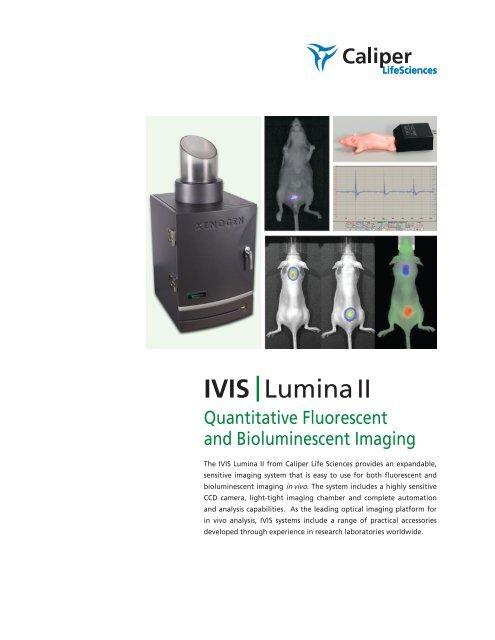 IVIS  Lumina II