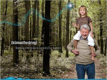 Lysbilde 1 - Energi Norge