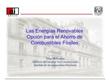 Jorge Huacuz Villamar - Las Energías Renovables