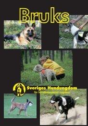 Bruks - Sveriges Hundungdom