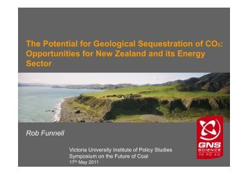 The Potential for Geological Sequestration of CO2 - Institute for ...