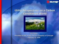 Utility Perspectives on a Carbon Constrained World Utility ...