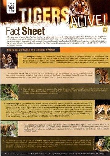 Tiger factsheet (English version) - WWF Malaysia