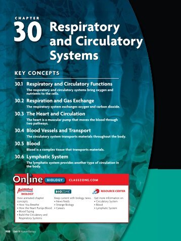 30 Respiratory and Circulatory Systems
