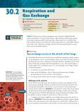 30 Respiratory and Circulatory Systems - Page 7