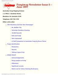 Fungimap Newsletter Issue 5 June 1997 - Royal Botanic Gardens ...