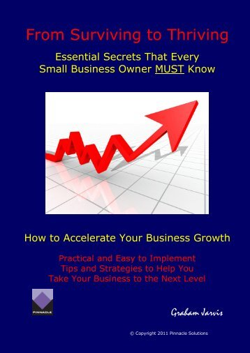 Download - Pinnacle – The Business Health Expert