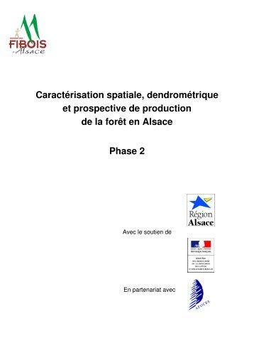 Caractérisation spatiale, dendrométrique et ... - FIBOIS Alsace
