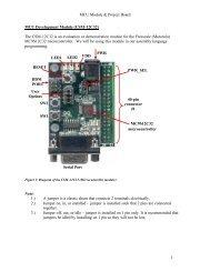 MCU Module & Project Board 1 MCU Development Module (CSM ...