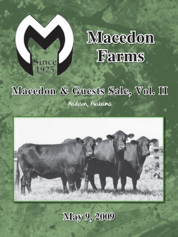 Macedon Farms - Angus Journal