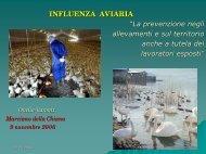 Onelio Baronti - Influenza aviaria - Arsia