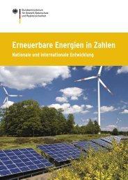 Erneuerbare Energien in Zahlen - Nationale und ... - Fes-japan.org
