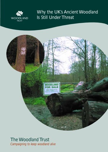 Ancient Woodland Threats - Woodland Trust