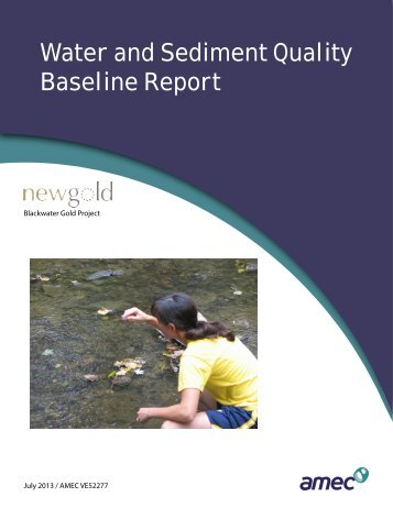 Water and Sediment Quality Baseline Report - New Gold
