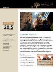 Fact Sheet - New Gold