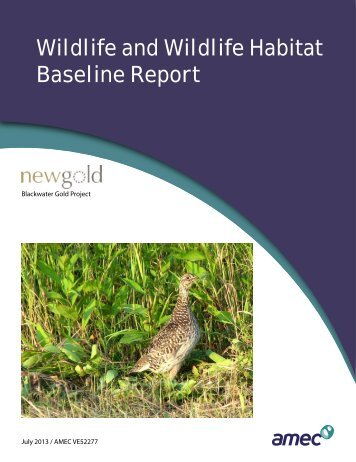 Wildlife and Wildlife Habitat Baseline Report - New Gold