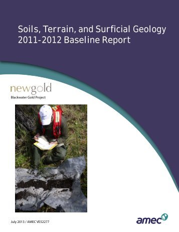 Soils, Terrain, and Surficial Geology 2011-2012 ... - New Gold