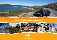 ESCAPE TO FALLS CREEK THIS SUMMER