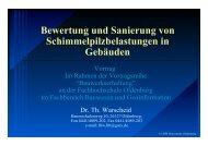 Bewertung und Sanierung von Schimmelpilzbelastungen in ... - KoBE