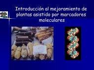 Selección asistida por marcadores moleculares