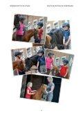 Pferde und Ponys im Kindergarten - Vorreiter Deutschland - Seite 4