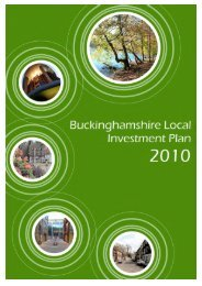 Local Investment Plan 2010 - Buckinghamshire County Council