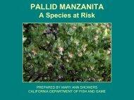 Pallid Manzanita Power Point Presentation by Showers