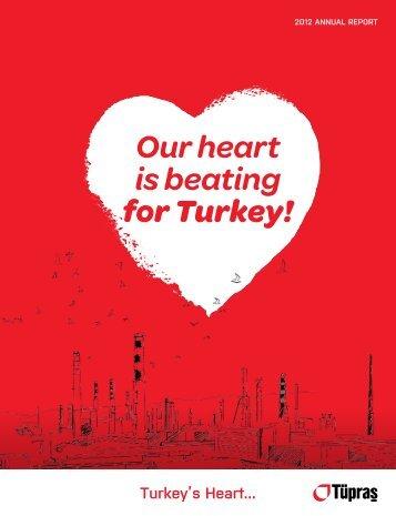 2012 Annual Report - Tüpraş