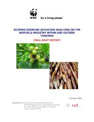 Situational Analysis on Biofuels Industry