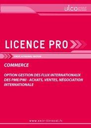 Licence pro Gestion des flux internationaux - Université du Littoral ...