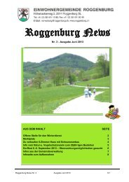 Roggenburg News 03/2013