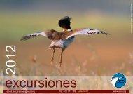Programa de Excursiones-Madrid 2012