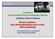 Der Gelenkinfekt und seine Behandlung - Septische Chirurgie