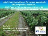 Presentation - Vegetable MD Online
