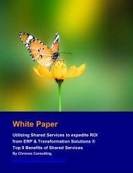 White Paper - Chronos Consulting