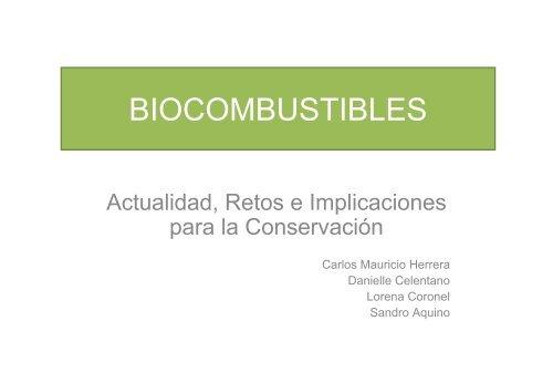 BIOCOMBUSTIBLES final.pdf