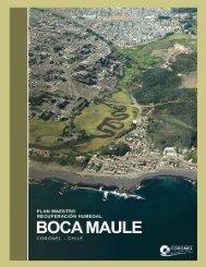 Plan Maestro Recuperación Humedal Boca Maule. Municipalidad de