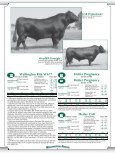 Heifer Pregnancy - Angus Journal - Page 5