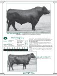 Heifer Pregnancy - Angus Journal - Page 6