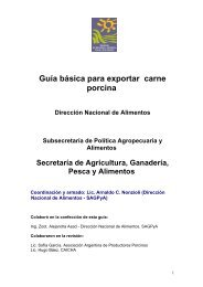 Guía básica para exportar carne porcina - Alimentos Argentinos
