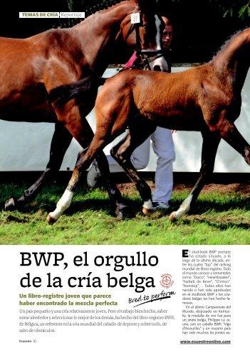 BWP, el orgullo de la cría belga