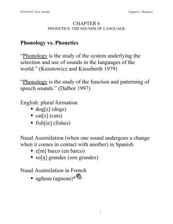 what really are phonetics together with phonology? essay
