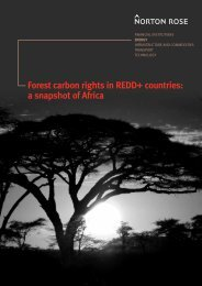 Forest carbon rights in REDD+ countries: a snapshot of Africa