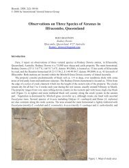 Observations on Three Species of Varanus in Ilfracombe, Queensland