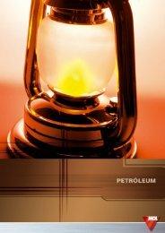 Petróleum (pdf, 727 kB) - Mol