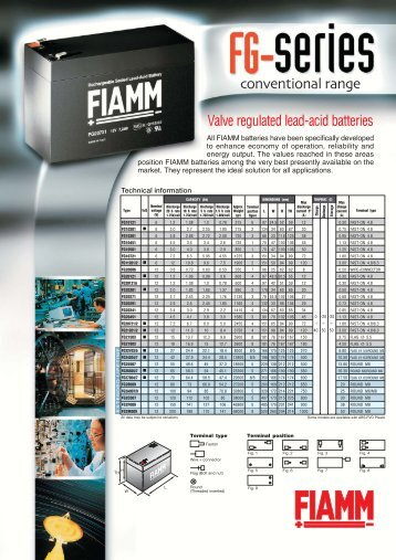 Data sheet FG defintivo.FH10