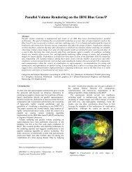 Parallel Volume Rendering on the IBM Blue Gene/P - Mathematics ...