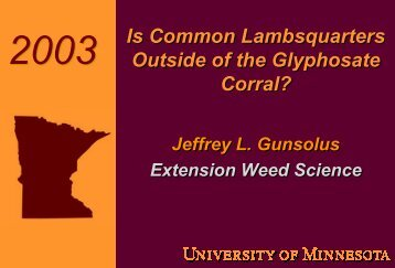 Is Common Lambsquarters Outside the Glyphosate Corral?
